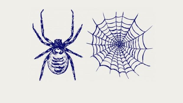 HERFST, Herfst op komst, spinnenwebben