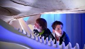 ecomare, leerzaam kinderuitje, leuk voor kinderen, uit met jongens, walvissen