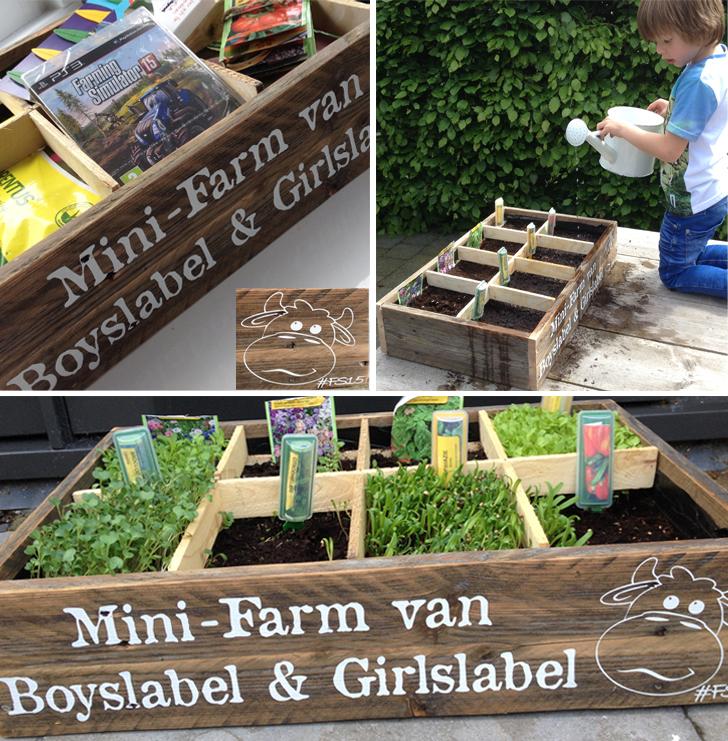 Mini-farm Boyslabel Girlslabel, FS15, farming Simulator 15