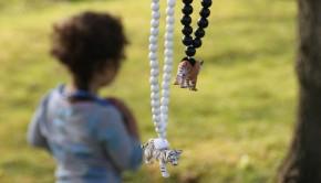 Pirates and Ponies, dierenketting voor kinderen