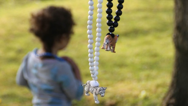Pirates and Ponies, dierenketting voor kinderen