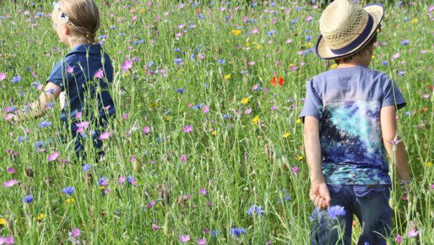 Moodstreet kinderkleding, zomerkleding voor jongens