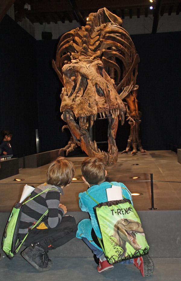 trix in Naturalis, T rex in Town, naturalis leiden, kinderuitje, dagje uit met jongens, dino tentoonstelling