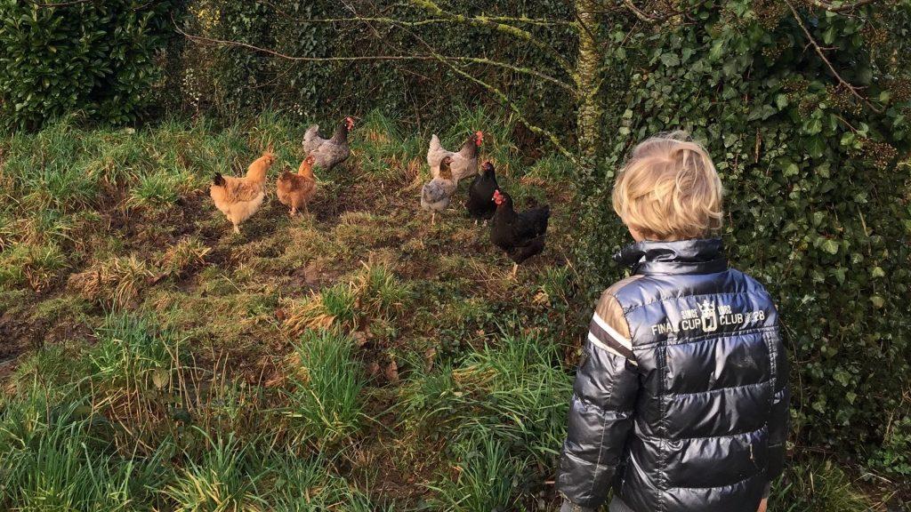 invloed van dieren op kinderen