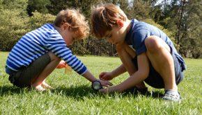 lente cadeautjes, jongenscadeau, buitenspeelgoed, onderzoeksetje, dieren onderzoeken, boyslabel