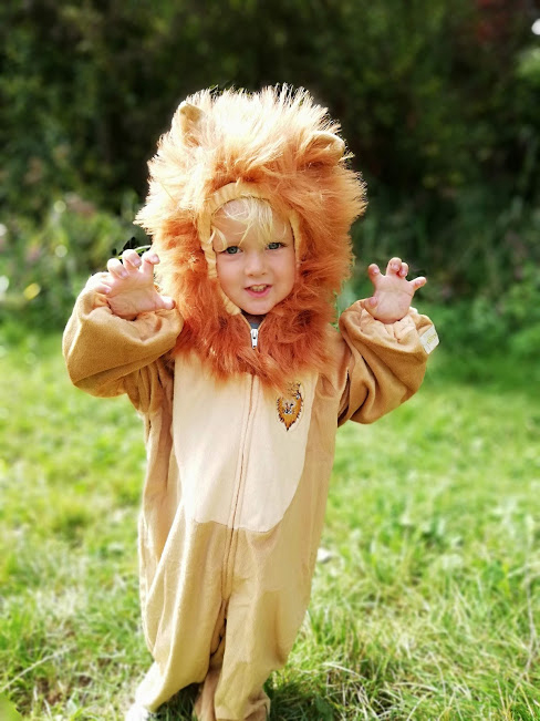 souza verkleedkleding, leeuwenpak, leeuwenkostuum, verkleedkleding leeuw, carnaval