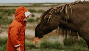 paardensport voor jongens, jongens paardrijden, cross challange, paardrijden