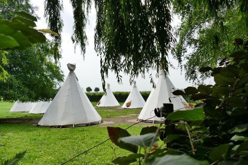 natuurhuisjes, slapen in bomen, uniek overnachten in de natuur, kidsproof vakantie, tipitent kamperen