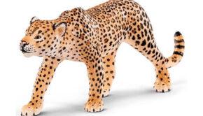 luipaardprint jongens kleding, luipaardprint kinderkleding