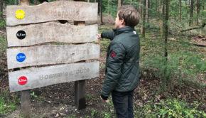 herfstvakantie uittips, kinderwandeling bos