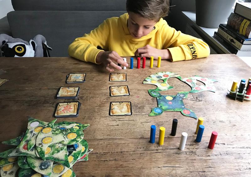 menara, menara bordspel, leuk spel voor kind 10 jaar, speelgoed 10 jaar,speelgoed 12 jaar