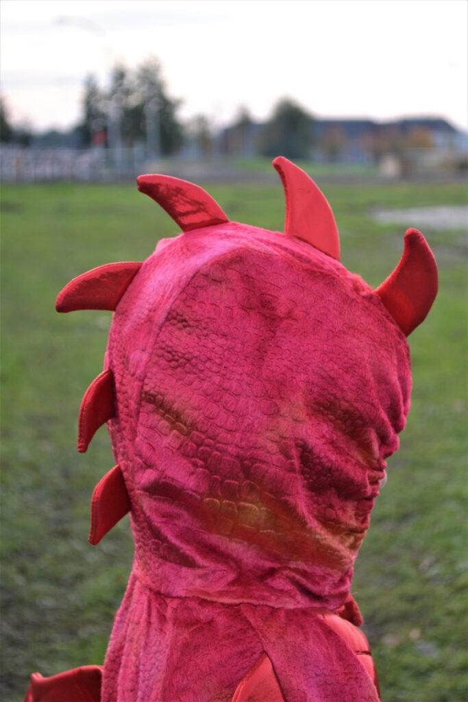 draken kostuum