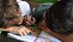 tegenvallend rapport, Basisschoolbegeleiding, bijles kind