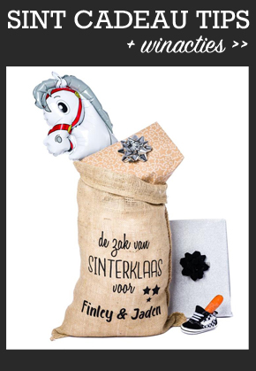 Sinterklaas cadeau jongen, sinterklaas cadeau inspiraties, voorbeelden sinterklaas cadeautjes , sinterklaas cadeautjes kind, schoencadeautjes kind