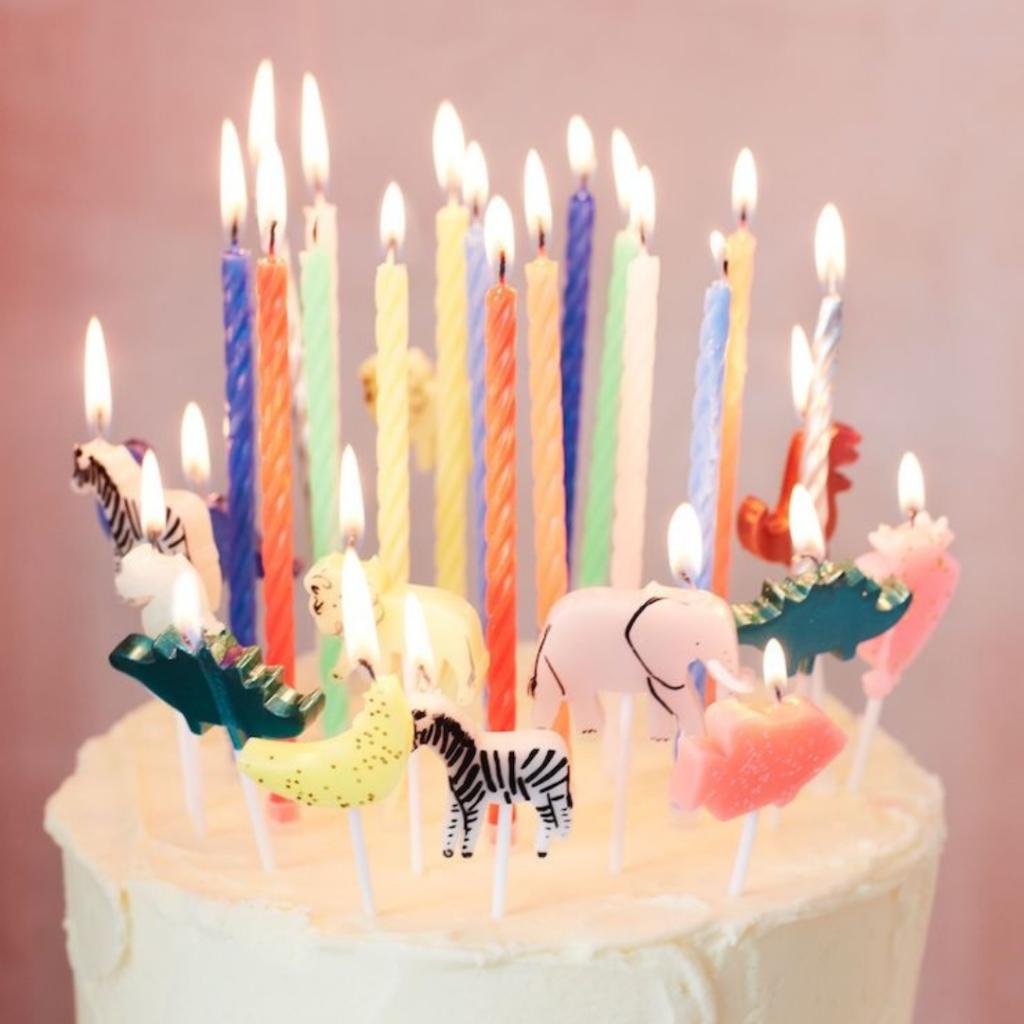 jarig, verjaardag vieren tijdens lockdown, kinderverjaardag, dino taart, jarig, verjaardag, verjaardagstaart, taartkaarsjes, dieren taart kaarsjes