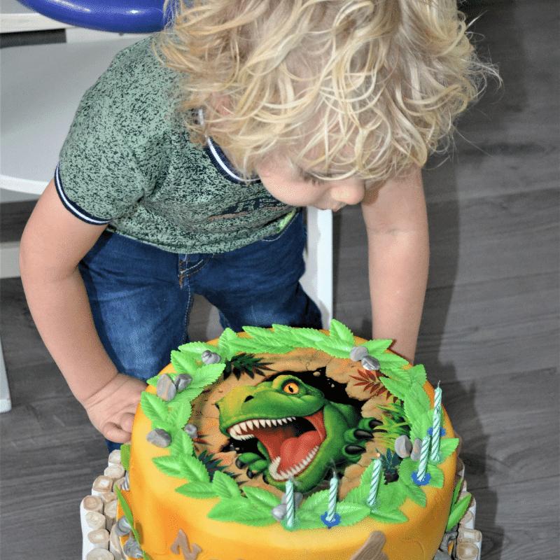 dino taart, verjaardag jongen 56 jaar, lockdown verjaardag, coronaproof verjaardag, coronaproof traktatie, coronaproof trakteren, coronaproof kinderfeestje