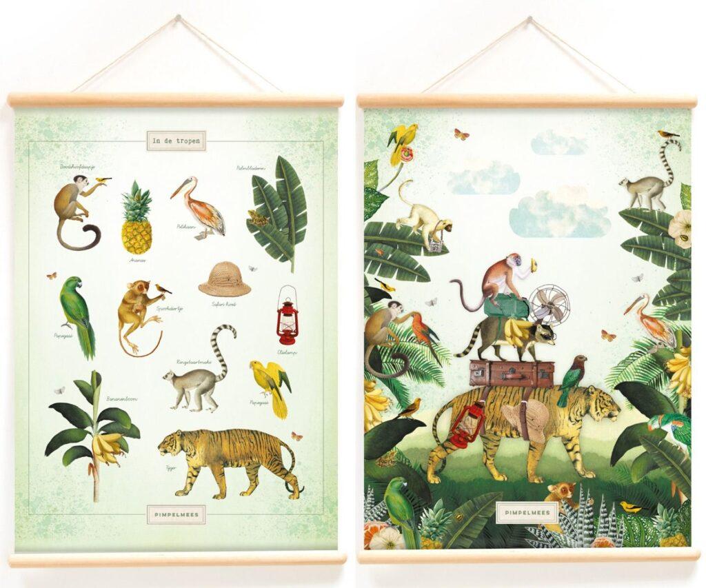 jungle poster, schoolplaat jungle, schoolplaat wilde dieren